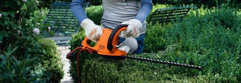 修剪绿篱的正确方法